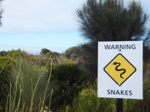 There be snakes!