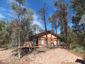Our hut here in Wilpena pound