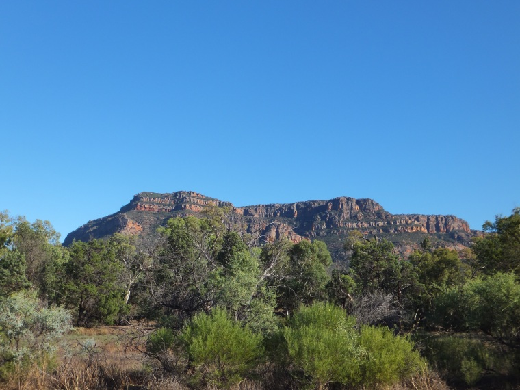 Leaving Wilpena Pound, wonderful light in the early-ish mprning