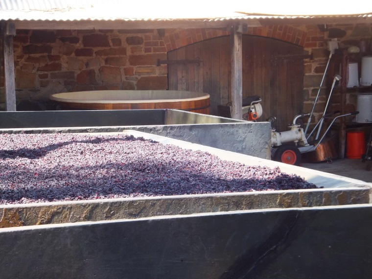 Square slate vats holding the grapes during the wine making process